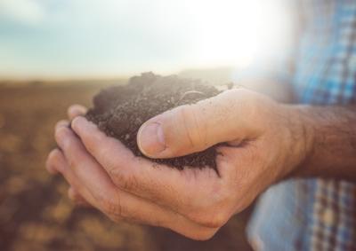 Nuovo Bando sull'agricoltura